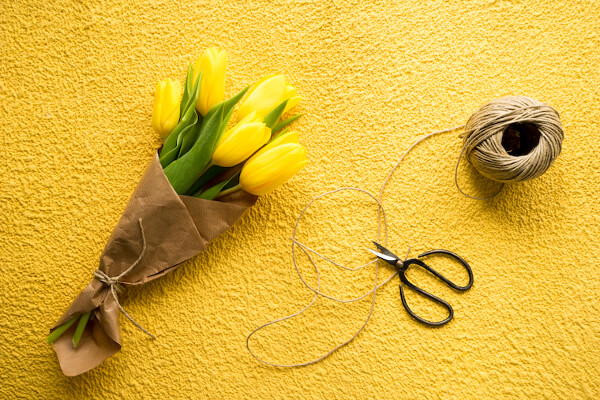 Yellow tulips with scissors on yellow background